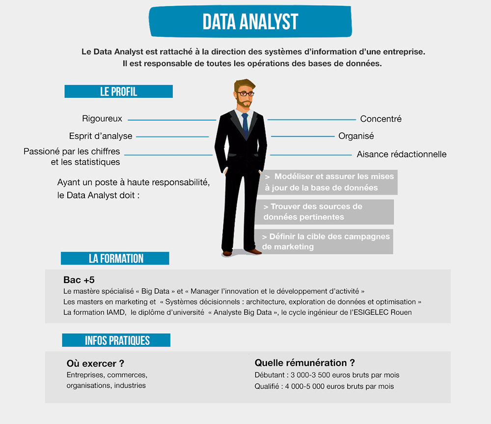 fiche metier data manager